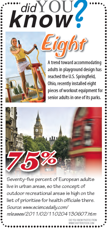 did you know about adult park excercise equipment?