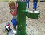 Pet fountains from Most Dependable Fountains support the needs of both pets and owners.