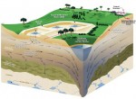 Pictured is the cross section of a Rapid Infiltration Basin