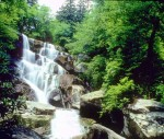 Ramsey Cascades at GReat Smoky Mountain National Park