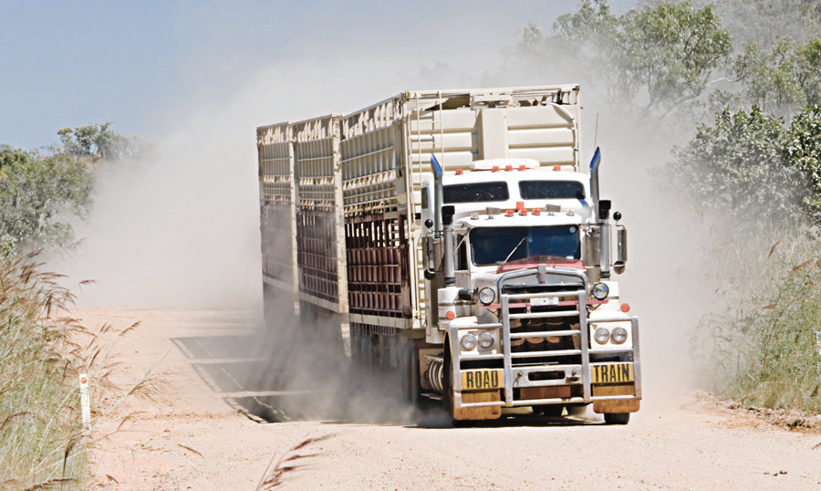 Dust control options for aggregate roads