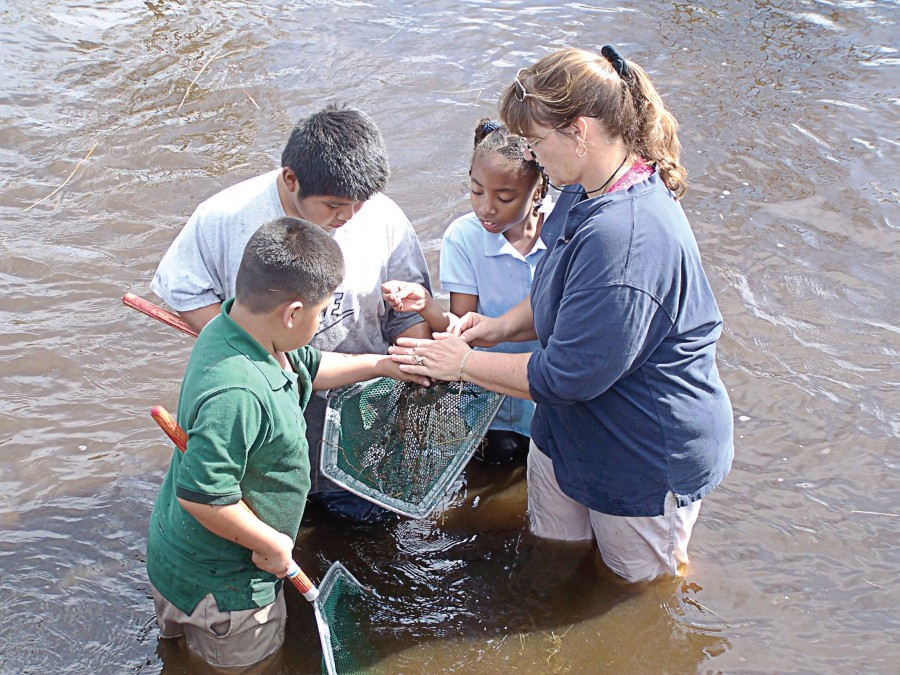 "Children dip-net in Grassy Waters Reserve, West Palm Beach, Fla., to learn about its ecosystem. ""We have school programs and weekend programs for families,"" said Jenni Redford, city sustainability manager. (Photo provided)"
