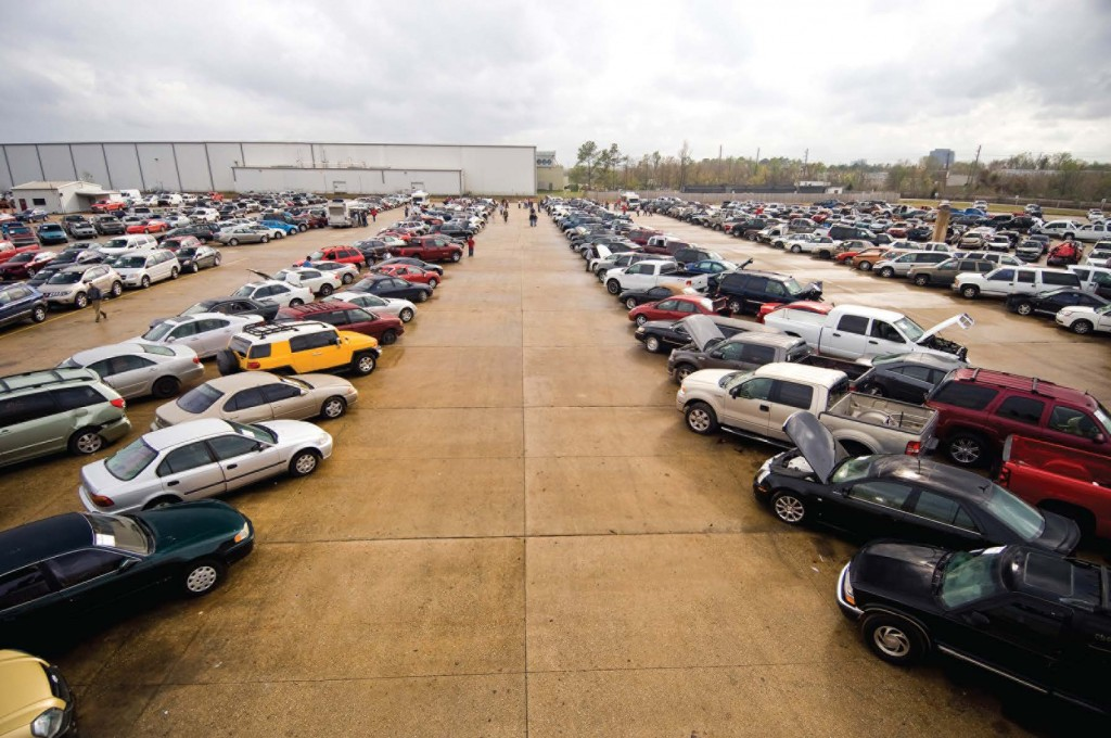 Insurance Auto Auction lot