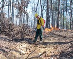 A crew member uses a drip torch in a prescribed burn at Cherokee National Forest. (Photo provided)