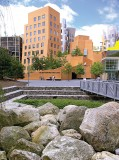 The Outwash Basin, located outside The Ray and Maria Stata Center at the Massachusetts Institute of Technology, reduces pollutant loads in rainwater and downstream damage from runoff while safely moving, controlling and containing rainwater, even capturing it for reuse. (Photo by Stuart Echols and Eliza Pennypacker)