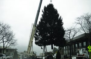 Bethlehem's electrical bureau starts decorating during the last week in September, completing a long list that include putting up lights, Christmas trees and more. The bureau wraps up its decorating by Thanksgiving, in time for the lighting ceremony that occurs on Black Friday. (Photo provided)
