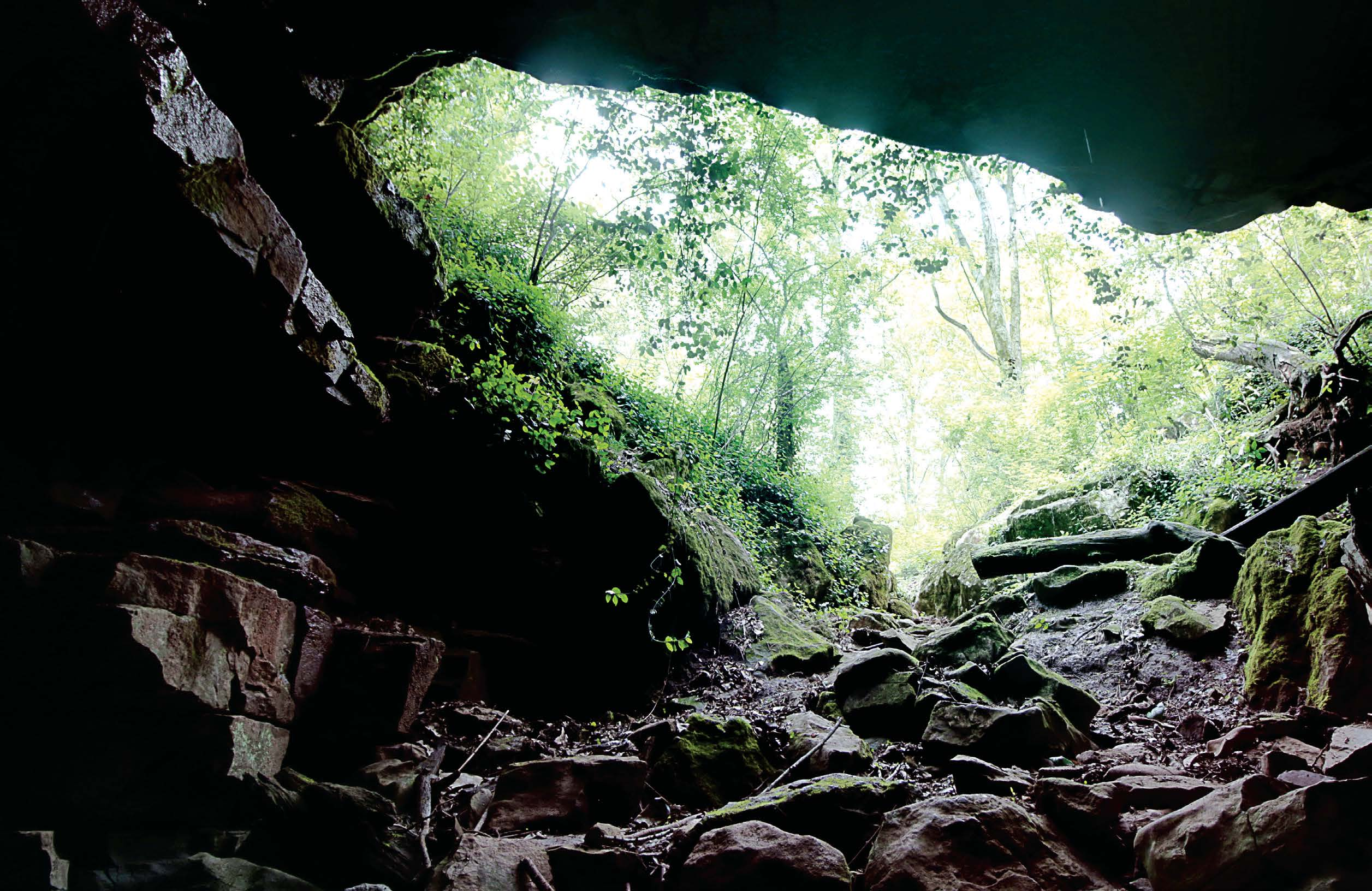 Protecting Groundwater In A Karst Landscape Takes