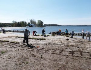 Volunteers plant marsh grasses on an unprotected beach. Coastal marshes can help protect against the effects of sea level rise. (Photo provided)