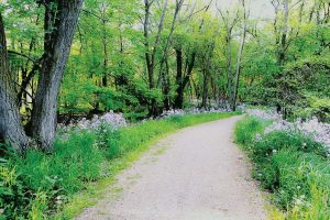 Green Circle Trail is one of many recreational opportunities available to residents and visitors of Stevens Point. (Photo provided by Nena Fisher)