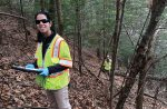 Fairfax County, Va., urban foresters climb a slope to monitor some hemlocks in the county. (Photo provided)
