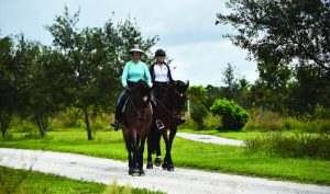 Horses are big business in Wellington, Fla., providing a boost to the local economy. Pictured are two riders enjoying the village's Environmental Preserve Horse Trail. (Photo provided)