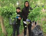 Volunteers have helped CCPR address invasive plants, particularly garlic mustard. (Photo provided)