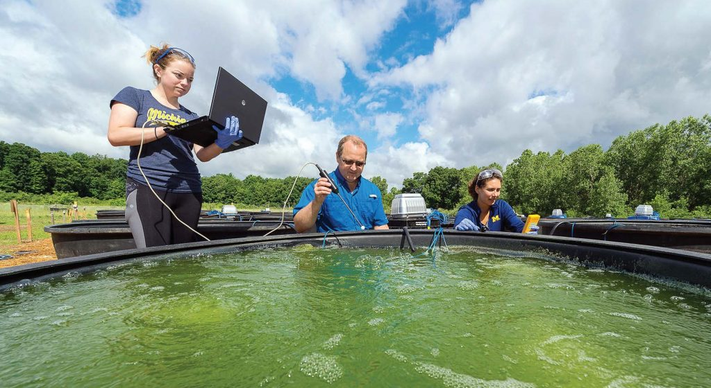 Funded by a $2 million grant from the U.S. Department of Energy, U of M aims to create biofuels using algae that work in existing diesel engines, ultimately reducing greenhouse gas emissions by 60 percent compared to normal diesel fuels. (Photo provided)